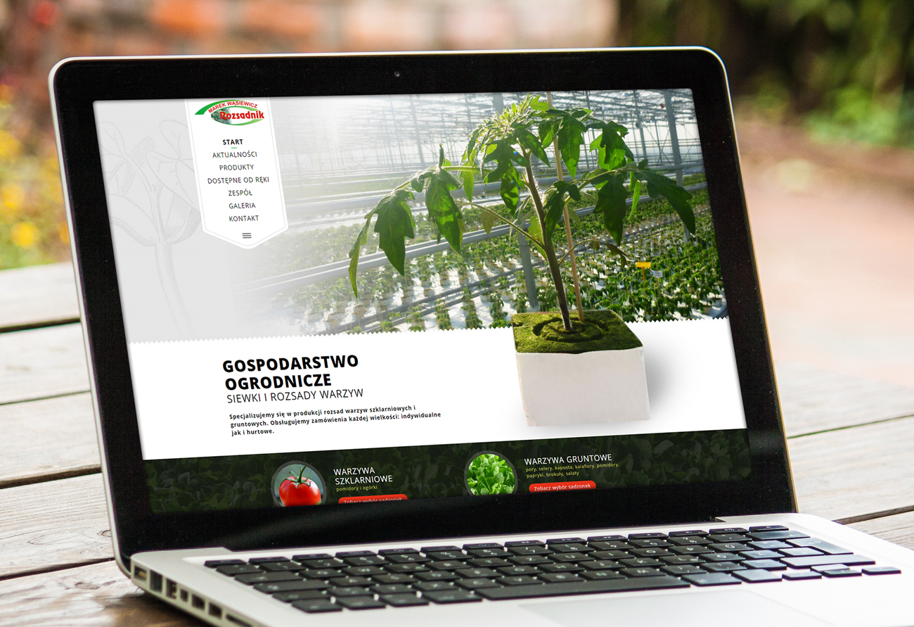 Rozsadnik.pl - wizualizacja projektu nowoczesnej strony internetowej