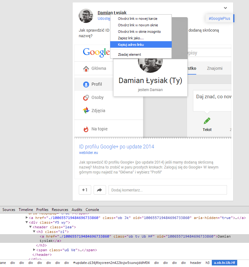 wpis-googleplus
