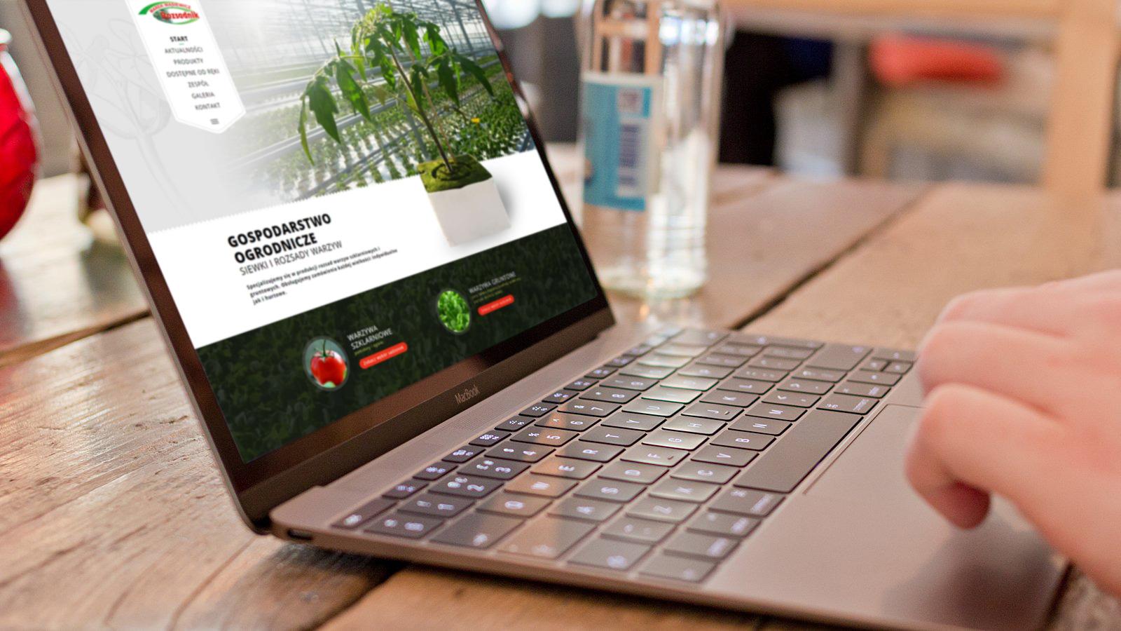 Wizualizacja strony internetowej dla Rozsadnik.pl
