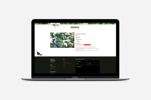 Rozsadnik.pl - strona internetowa